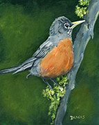 Forest Birds Prints - Robin on Branch in Forest Print by Dottie Dracos