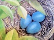 Nest Pastels Posters - Robins Egg Blue Poster by Stephanie L Carr