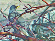 Abstract Expressionist Photo Metal Prints - Robins Impression of Spring Metal Print by Lenore Senior