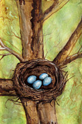 Bird Art Drawings Prints - Robins Nest Print by Carrie Jackson