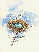Nest Paintings - Robins Nest by Sam Sidders