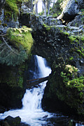 Arlyn Petrie Metal Prints - Rock Arch Falls Metal Print by Arlyn Petrie