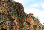 Austin Building Posters - Rock Arches with Vines Poster by Gayle Johnson