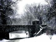 Covered Bridge Pyrography Prints - Rock Creek Parkway Washington DC Print by Fareeha Khawaja