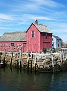 Linda Drown - Rockport MA