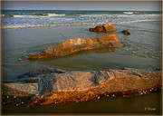 Beach Scenes Photos - Rocks and Waves by Leslie Revels Andrews