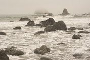 Foggy Day Prints - Rocks Dot The Shoreline And Tidal Area Print by Phil Schermeister