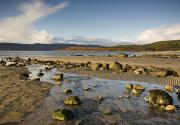 Featured Metal Prints - Rocky Beach, Argyll And Bute, Scotland Metal Print by John Short