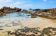 Tropical Waters Metal Prints - Rocky Beach View Metal Print by Kaye Menner