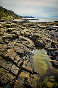 Tide Pools Posters - Rocky Coast Poster by Heather Applegate