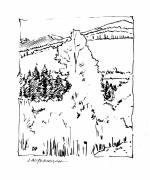 Rocky Drawings Prints - Rocky Mountain Aspens Print by John Lautermilch