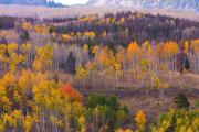 Lightning Wall Art Prints - Rocky Mountain Autumn View Print by James Bo Insogna