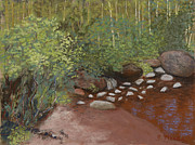 Aspen Trees Pastels Prints - Rocky Mountain Creek Print by Ginny Neece