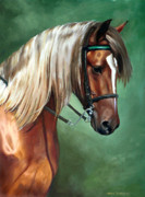 Horse Head Paintings - Rocky Mountain Horse by Linda Tenukas