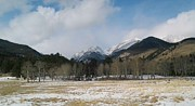 Snow Drifts Photos - Rocky Mountain National Park Aspen Grove by David D Cummings