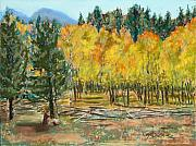 Colorado Trees Pastels Prints - Rocky Mountain Siesta Print by Mary Benke