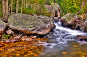 Colorado Stream Prints - Rocky Mountain Stream Print by Scott Mahon