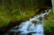 Rocky Mountain Waterfall Print by Ellen Heaverlo