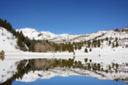 Winter Storm Photo Originals - Rocky Mountain winter by Mark Smith