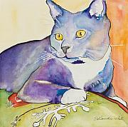 Watercolor Cat Paintings - Rocky by Pat Saunders-White