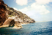 Tropical Photographs Photos - Rocky Shore by C Sitton