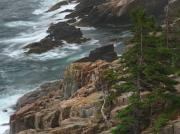 Acadia National Park - Rocky Shoreline of Acadia National Park by Juergen Roth