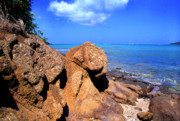 Puerto Rico Prints - Rocky Shoreline Print by Thomas R Fletcher