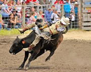 Cowboy Photos Prints - Rodeo 2 Print by John  Greaves