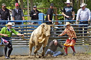 Bulls Art - Rodeo Clowns to the Rescue by Sean Griffin
