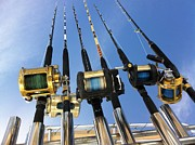Saltwater Fishing Art - Rods by Sara Stevenson