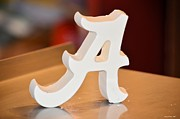 Roll Tide Prints - Roll Tide Print by Maria Urso