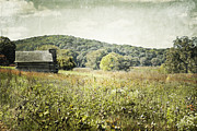 Log Cabin Art Photo Prints - Rolling Hills Cabin Print by Andrea Hazel Ihlefeld