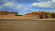 Amish Prints - Rolling Hills Straight Shadows Print by Robert Harmon