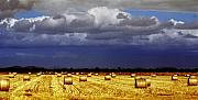 Hay Bales Art - Rolling On by Holly Kempe