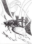Bugs Drawings Prints - Rolling Print by Ramiliano Guerra