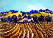 Autumn Vineyards Paintings - Rolling Vineyards by Shellley Capovilla