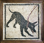 Tiles Framed Prints - Roman Guard Dog Mosaic Framed Print by Sheila Terry