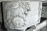 Cremation Photos - Roman Marble Sarcophagus by Sheila Terry