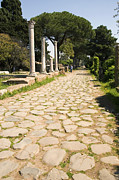 Roman Archaeology Prints - Roman Road, Ostia Antica Print by Sheila Terry