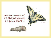Calligraphy Drawings Prints - Romans 12 Be Transformed Print by Betsy Gray