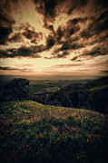 Walnut Tree Photograph Prints - Romanticizing the sunset at Mount Diablo Print by Laszlo Rekasi