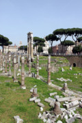 Ruins Originals - Rome Ruins by Munir Alawi