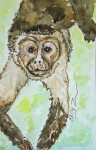 Mammals Mixed Media Prints - Romeo Mono Print by Kelly     ZumBerge