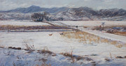 Snow Covered Pastels Prints - Romp Print by Susan Driver