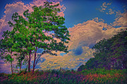 Saint Charles Prints - Romp Through A Colorful Field Print by Bill Tiepelman