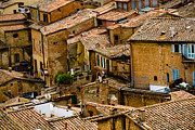 Sienna Italy Framed Prints - Rooftop View Framed Print by Heather Kallhoff