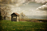 Shed Digital Art Metal Prints - Room With A View Metal Print by Lois Bryan