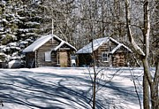 Log Cabins Prints - Rooms for Rent Print by Vickie Emms