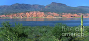 Roosevelt Photo Framed Prints - Roosevelt Lake - Panoramic Framed Print by Sandra Bronstein