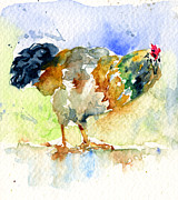 John Benson Paintings - Rooster 1 by John D Benson